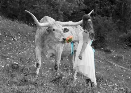 Uznay-Mallery Wedding, Addy, WA