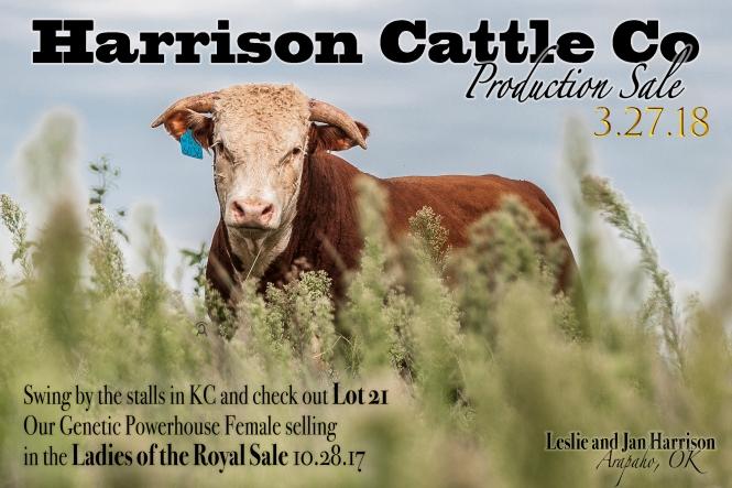 Harrison Sale Date Ad