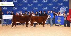 Toronto Royal Winter Fair with JDL's Supreme Female
